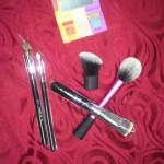 Look what I got! Brush Haul..
