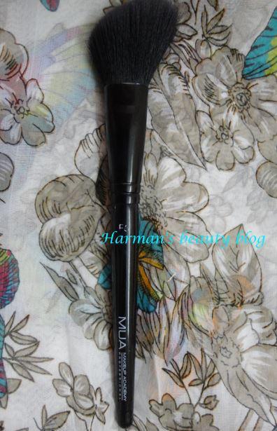 MUA blush brush mini review!