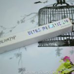 Colourpop Ultra Metallic Lip Flitter Review!